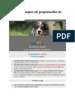 Obligaţiile majore ale proprietarilor de câine