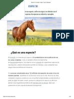 Especie_ Concepto, Origen, Tipos y Ejemplos