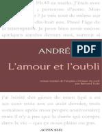 L'Amour et l'Oubli - Andre Brink