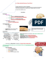 Musculoskeletal  Lecture 1 SG