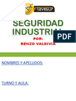 SEGURIDAD INDUSTRIAL RV2.pdf