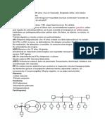 HC 1 - Portafolio