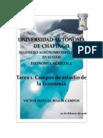 Tarea 1. Campos de la Economía