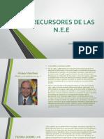 PRECURSORES DE LAS NEE