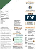 Newsletter Nov 21 2010