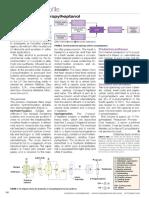 Production of 2-propylheptanol.pdf