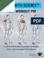 PDF-Push-Workout