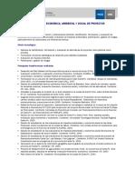 Ficha_evaluacion_de_proyectos.pdf