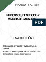 PPT Gestion de la Calidad 2019.pptx