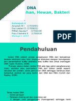 PPT ISOLASI DNA TUM HEW BAK.pptx