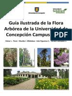 Guía Ilustrada Flora arbórea Universidad de Concepción campus Chillán