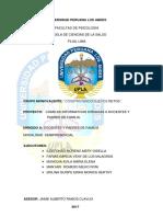 PROYECCION SOCIAL ERIKA 2.docx