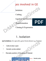 5-stages-involved-in-ge.pps