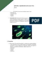 Francisco Perez - Biología.docx