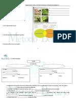 para-el-tema-4.-The-plants-kingdom.5ºprim.pdf