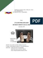 analisis preliminares DML