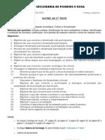Matriz do 2º teste sociologia Metodologias Cultura Socialização 2010-2011x