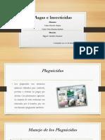 PLAGAS E INSECTICIDAS - CARLOS BASURTO RAYÓN