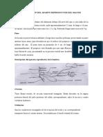TIPIADO GRUPO 4 NACIONAÑ - copia.pdf