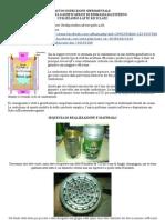 Autocostruzione Di Stufa Gassificatrice a Biomassa (ITA)
