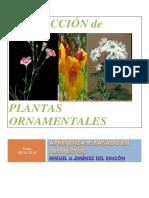 PROYECTO ABP Elaboracion de plantas ornamentales_68e4f142-d819-e522-2d55-f13e2869b7de.docx