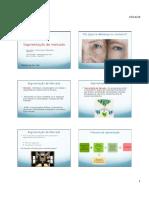 Segmentacao_de_mercado.pdf