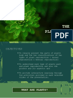 Plants-reproduction-and-function
