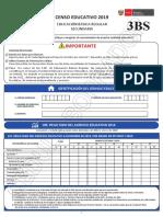 Cedula 3BS Censo Educativo 2019 (1)
