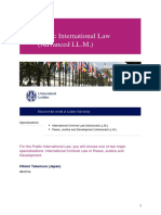 Public International Law (Advanced LL.M.)-en