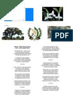 Simbolos Centroamericanos