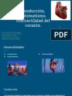 Tema 3.3 Fisio