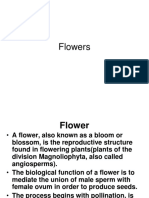 Flowers-and-Seeds.pdf
