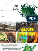 Wildlife Depletion