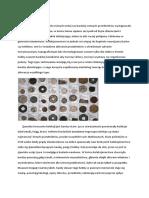 Kolekcjoner.pdf