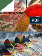 Aguas Residuales en Bolivia MAS EFECTOS.pptx-1