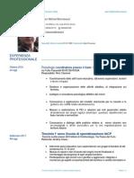 JeanMichel_Bonneaud_CV