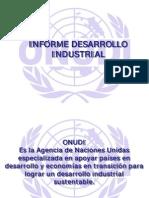 Informe Desarrollo Industrial ONUDI