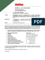INFORME 2019 CONFORMIDAD DE VAL N° 13 - CREACION E IMPLEMENTACION DEL PALACIO DE LA JUVENTUD EN EL AMBITO DE INFLUENCIA DE PUENTE PIEDRA 01.docx
