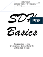 SDH BASICS.pdf