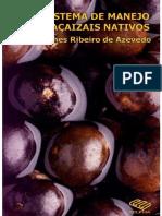 James-Ribeiro-de-Azevedo-Livro-Acai.pdf