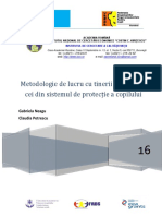 metodologie_de_lucru.pdf