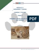 Módulo I - Tema 1 origen y razas de perros.pdf