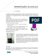 05_Ferm_Alcoolica_Monitoramento.pdf