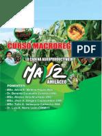 CURSO MACROREGIONAL DE LA CADENA AGROPRODUCTIVA DEL MAIZ AMILACEO