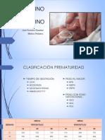 Prematuro_y_posmaduro[1].pdf