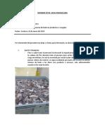 INFORME DE  TEMPERATURA EN PROCESO.docx