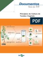 Principios-da-Cultura-de-Tecidos-Vegetais (2)