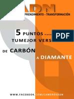 DE CARBÓN A DIAMANTE  EFECTO ADN.pdf