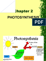 _9__Photosynthesis.pdf