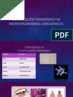 Clasificación taxonómica de microorganismos cariogénicos.pptx